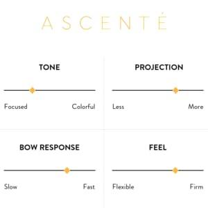 Ascente