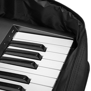 Tiger 25-49 Key Keyboard Bag with Handle 720x280x75mm