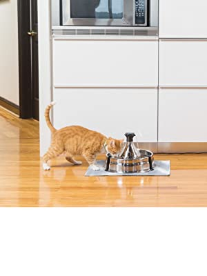 PetSafe Drinkwell 360 Stainless Dog Cat Water Fountain Automatic Pet Drinking Bowl Carbon Filter pet