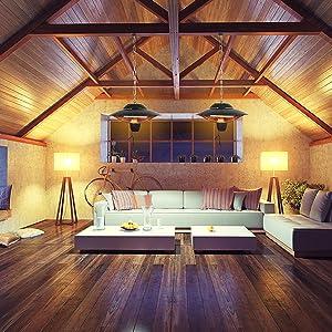Attic/Living Room