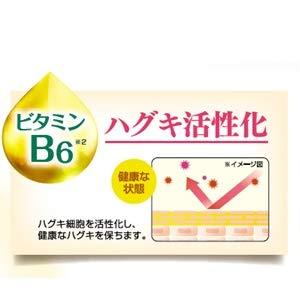 ビタミンB6 ハグキ活性化