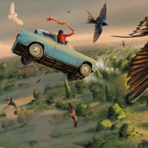 Harry Potter, Chamber of Secrets, Flying Car