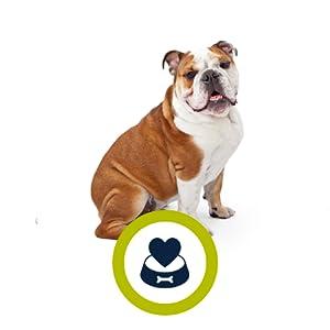 ADVANCE Veterinary Diets Hypoallergenic - Pienso Para Perros Hipoalergénicos - 2,5 kg