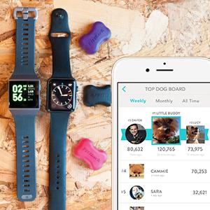 Dog Fitbit, Dog Apple Watch, Dog Jawbone, Dog Garmin