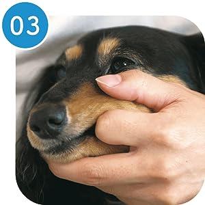 ペット犬猫歯みがきシート歯垢口臭きキレイに拭き取る