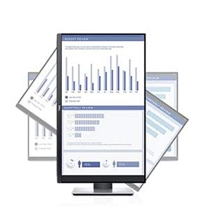 dell monitor business