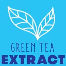 green tea extract, mentos gum, mentos fresh mint gum, mentos