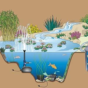 Oase AquaMax Eco Classic 5500 - Bomba de filtración: Amazon.es: Jardín