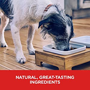 Great-tasting Ingredients Cutting-edge food science provides the taste and nutrition your pet needs.