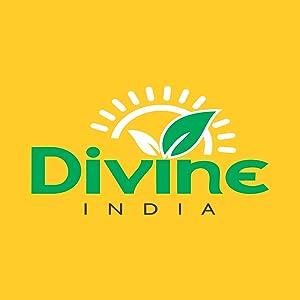 Divine India Aloe Vera Gel 200 ml