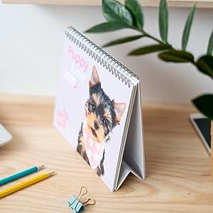 Calendario da Scrivania 2020 Erik/® ideale per casa o ufficio 17x20 cm Studio Pets Dogs