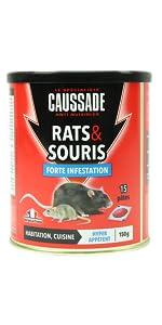 RATS SOURIS