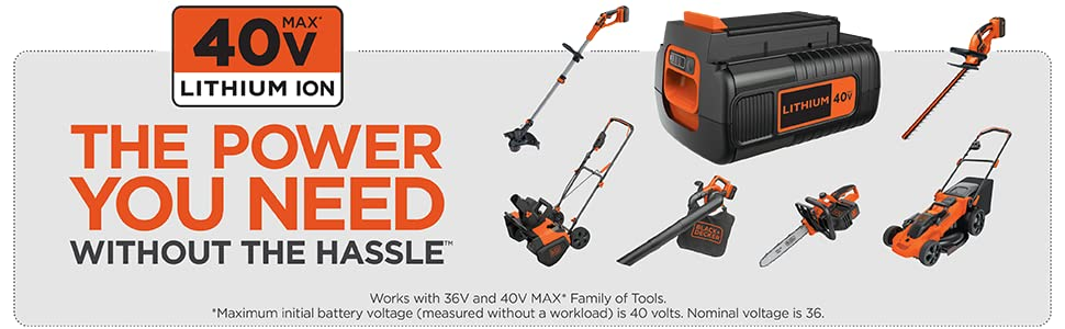 Amazon.com : BLACK+DECKER 40V MAX Cordless Chainsaw, 12