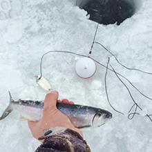 ice fishing night ibobber