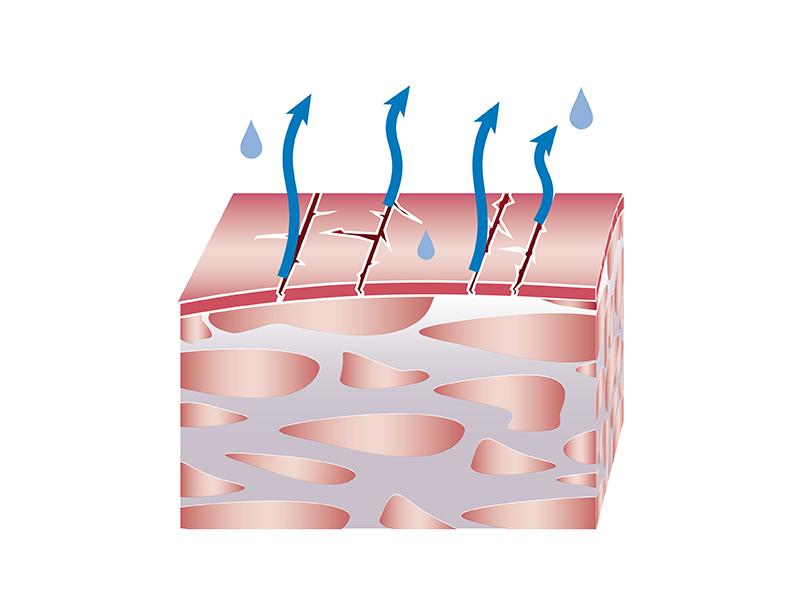 Avene Dry Skin