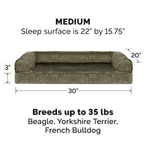 dog; cat; bed; sofa; couch; dark sage; medium