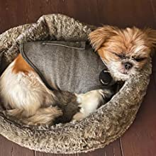 a thundershirt calming wrap helps to keep dogs calm