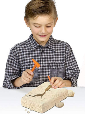 発掘キット