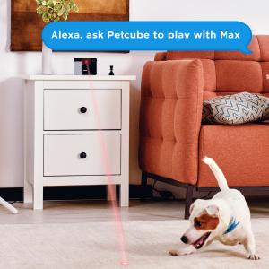 pet camera with voice control amazon alexa