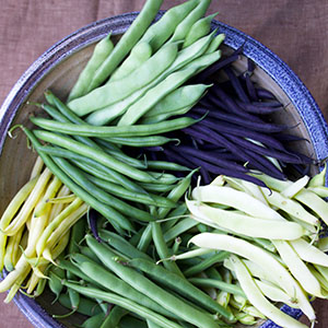 Beans, Peas, and Okra
