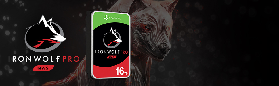 Segate IronWolf Pro