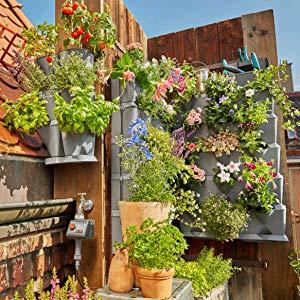Gardena NatureUp Soporte mural, fijación de pared para 3 ...