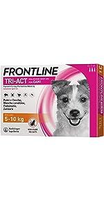 frontline cane