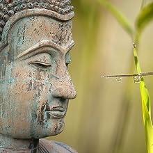 buddha, buddhism, buddhist, buddhist, teaching
