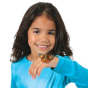 A little girl holding a butterfly in her hand