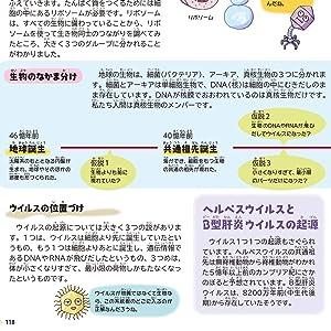 ウイルスと生命進化