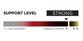 A2-DX support level