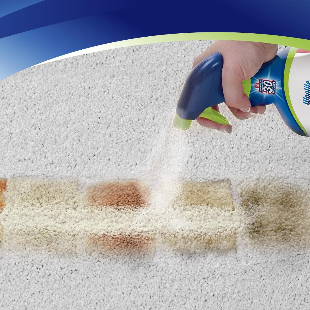 Amazon Com Woolite Instaclean Stain Remover 1742 Home
