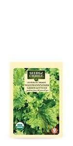 ... Organic Waldmanns Dark Green Lettuce Seeds ...
