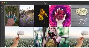 Adobe Senseiの機械学習を利用した自動タグ付け機能により、どの写 真にも自動的に検索用のキーワードが付与されるので、写真を簡単に 検索したりアルバムに整理したりできます