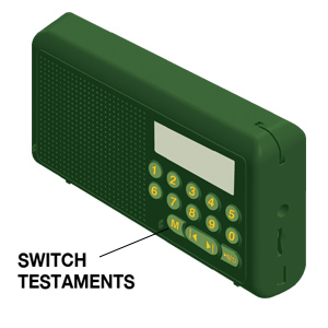Switching From Old Testament to New Testament