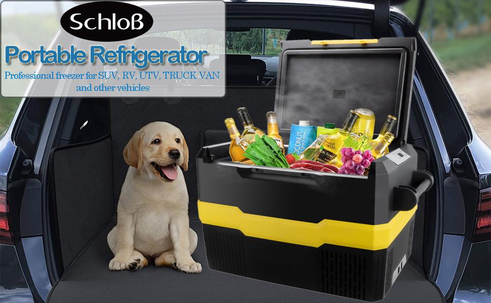 car portable frezzer/cooler