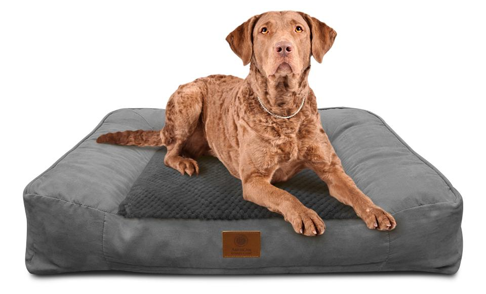 100 kong lounger dog bed pillow bolster u0026 lounger beds