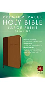 cheap good deal new living translation bible low cost gift best value reading plan large print
