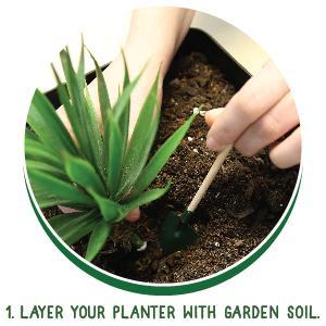 create your own unique garden terrariums - Garden Soil