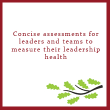Concise assessments for leaders and teams to measure their leadership health