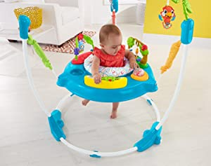 8d433006477a Fisher-Price Musical Friends Jumperoo  Amazon.ca  Baby