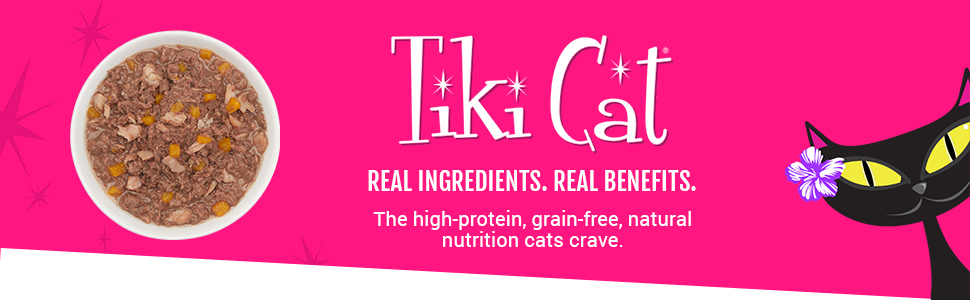 no grain, high protein, low carb, best wet cat food, canned real meat, quality healthy chicken fish