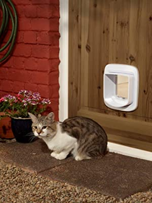 chatiere chat petsafe micropuce