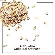oat organic ingredient