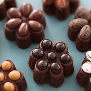 Wilton, mini flower silicone mold, brownie bites, mini flower cakes, chocolate frosting