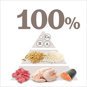 Nutrición 100% completa y equilibrada