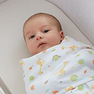 swaddle wrap for newborn