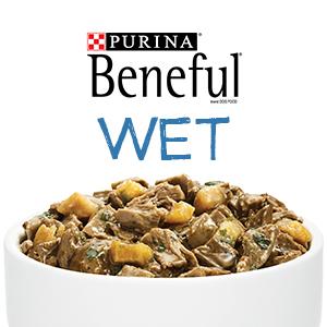 Purina Beneful brand dog food