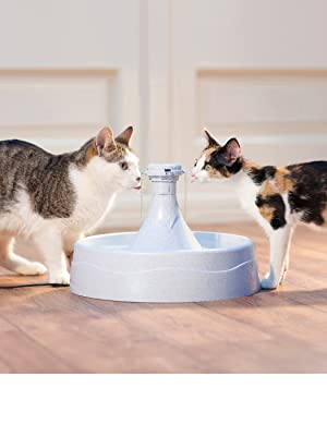 PetSafe Drinkwell Dog Cat Water Fountain 360 Automatic Drinking Bowl Pet Pioneer Catit Filter Pump
