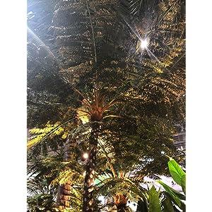 AMERIQUE PREMIUM ARTIFICIAL TREES AND PLANTS